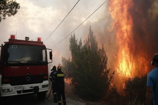 Συναγερμός στη Νέα Μάκρη: Ξέσπασε φωτιά στην Αγία Μαρίνα!