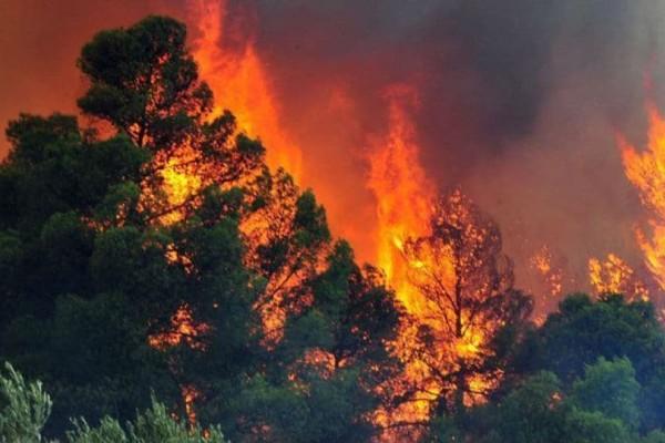 Προσοχή: Πολύ υψηλός κίνδυνος πυρκαγιάς και για αύριο Πέμπτη