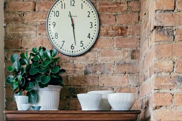 Πάρτε ιδέες: 3 chic φυτά θα τα συναντάτε σε όλα τα μοντέρνα σπίτια!