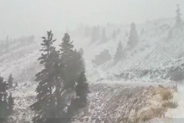 Χειμώνιασε για τα καλά! - Ισχυρή χιονοθύελλα στον Παρνασσό! (Video)