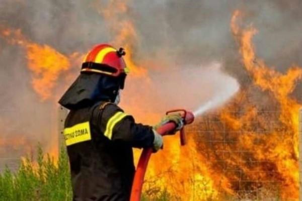 Τέσσερα πύρινα μέτωπα στη Δυτική Ελλάδα - Φωτιές σε Αχαΐα, Ηλεία και Αιτωλοακαρνανία