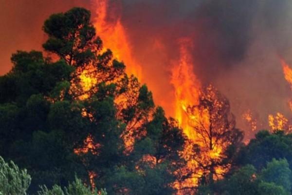 Ηλεία: Μεγάλη φωτιά στην περιοχή Ρεβελέικα
