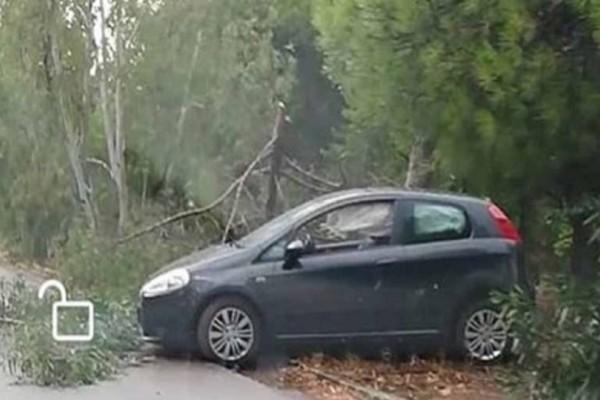 Τροχαίο στην Καισαριανή: Αυτοκίνητο ξέφυγε από την πορεία του - Δύο τραυματίες!