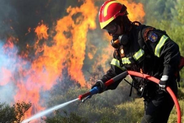 Προσοχή: Πολύ υψηλός κίνδυνος πυρκαγιάς σε Μεσσηνία και Λακωνία!