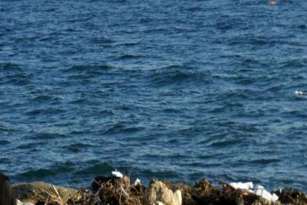 Σάλος στην Μυτιλήνη: Ασυγκράτητο ζευγάρι σε... στοματικές περιπτύξεις σε παραλία του νησιού μέρα μεσημέρι! (video)