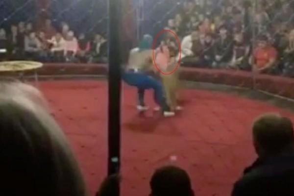 Βίντεο σοκ: Λιοντάρι επιτέθηκε μέσα σε τσίρκο σε 4χρονη!