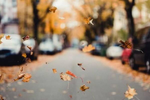 Η φωτογραφία της ημέρας: Βόλτα στους φθινοπωρινούς δρόμους!