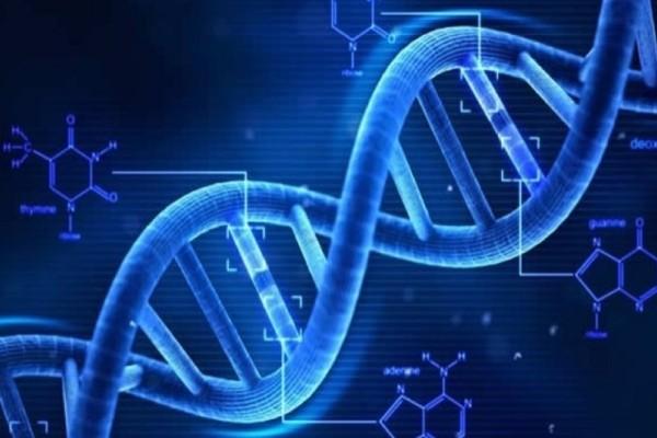 Νέα μελέτη αποκαλύπτει σύνδεση μεταξύ DNA και καρκίνου!