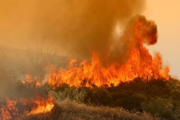 Κέρκυρα: Ανεξέλεγκτη η πυρκαγιά, εκκενώνεται οικισμός!