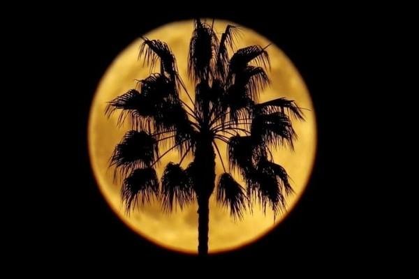 Η φωτογραφία της ημέρας: Πανσέληνος στο Ενσινίτας της Καλιφόρνια!