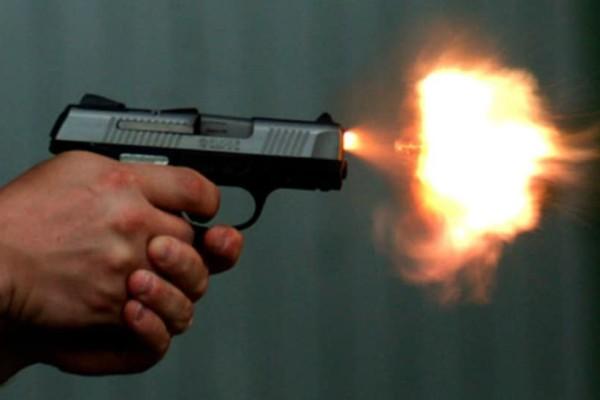 Κρήτη: Ασυνείδητοι πυροβόλησαν και σκότωσαν έγκυο σκυλίτσα!