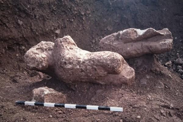 Ανακάλυψη στη Φθιώτιδα: Αγρότης βρήκε τυχαία τους Κούρους της Αρχαϊκής περιόδου! (photos)
