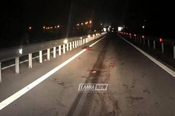 Απίστευτο τροχαίο στη Φθιώτιδα: Οδηγός συγκρούστηκε με κοπάδι αγριογούρουνων!