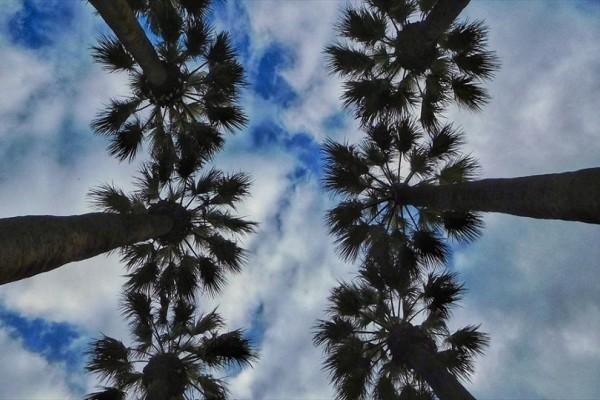 Η φωτογραφία της ημέρας: Συννεφιασμένος ουρανός στην Αθήνα!