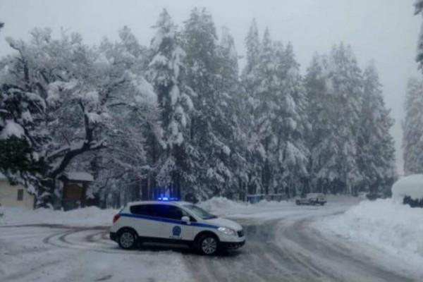 Τα πρώτα χιόνια έπεσαν! Στα λευκά Θράκη και Ροδόπη (photos)