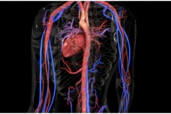 Αγγειίτιδα: Τα «αθώα» συμπτώματα από σοβαρό πρόβλημα στα αγγεία!