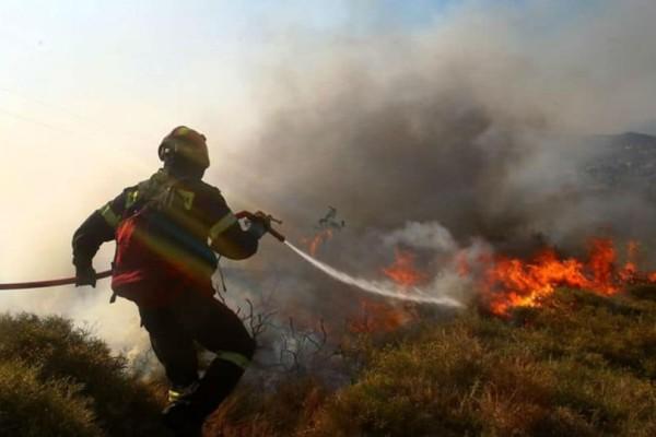 Κρήτη: Πυρκαγιά στην Ιεράπετρα!