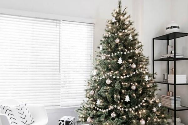 Σαν σήμερα 24 Δεκεμβρίου στολίζεται το πρώτο δέντρο στην Ελλάδα