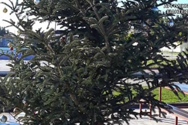 Κι όμως συνέβη: Έκλεψαν τον στολισμό από χριστουγεννιάτικο δέντρο!