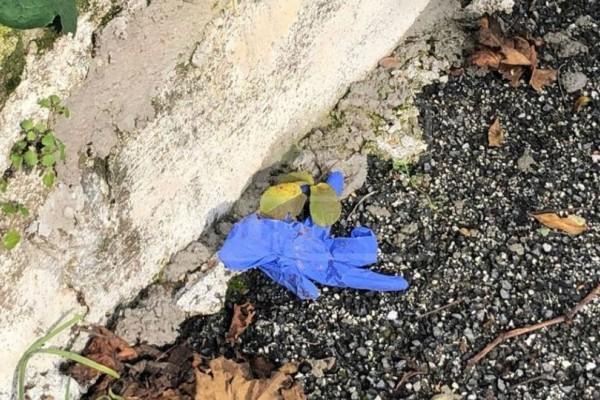 Έγκλημα στη Κέρκυρα: Σοκαριστικές εικόνες από το σημείο της δολοφονίας