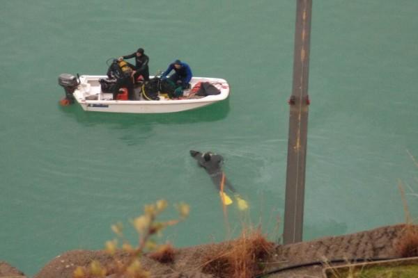 Φρίκη στο Αγρίνιο: Σοκαριστικό τέλος στην εξαφάνιση της αγνοούμενης γυναίκας! Βρέθηκε νεκρή στον πάτο λίμνης