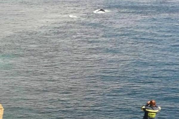 Θρίλερ στη Χαλκιδική:  Ψαροντουφεκάς εντόπισε κρανίο!