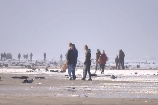 Απίστευτο κι όμως αληθινό: Η θάλασσα σε Ολλανδία και Γερμανία ξεβράζει τηλεοράσεις, έπιπλα και... χημικά!