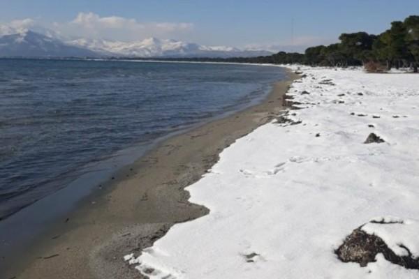 Απίστευτο θέαμα στον Σχινιά: Κυριολεκτικά χιόνι μέχρι την θάλασσα!