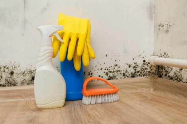 Καθαριότητα στο σπίτι: Έτσι θα απομακρύνετε την οσμή από μούχλα!
