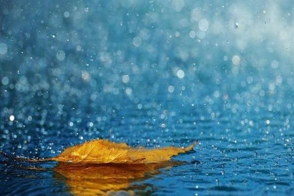 Εσύ το είχες σκεφτεί ποτέ; - Γιατί άραγε μυρίζει η βροχή;