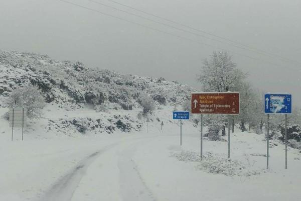 Σάκης Αρναούτογλου: Αναλυτικοί χάρτες του μετεωρολόγου για το που θα χιονίσει!