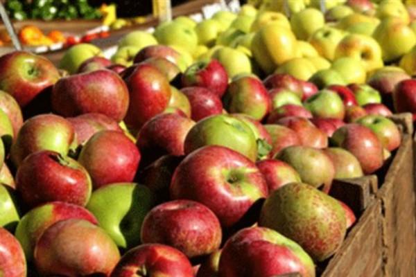 Συναγερμός στον Πειραιά: Δέσμευσαν πάνω από 1 τόνο ακατάλληλα φρούτα και λαχανικά!