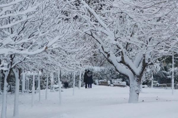 Ο καιρός τρελάθηκε στην Ευρώπη: Ρεκόρ ζέστης στον Βορρά, παγετός στον Νότο!