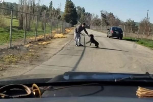 Viral: Όλη η αλήθεια για την εγκατάλειψη σκύλου! Τι έκανε ο άνδρας;