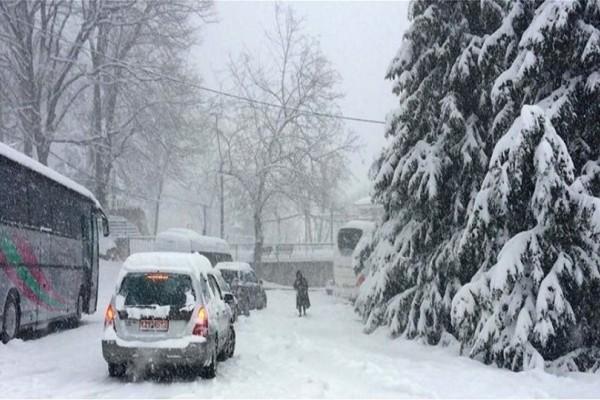 Λάρισα: Αυτοκίνητα και Λεοφωρεία εγκλωβισμένα από το χιόνι!