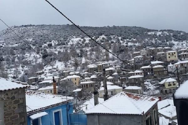 Βόλτα με χιονοπέδιλα στην χιονισμένη Λέσβο!