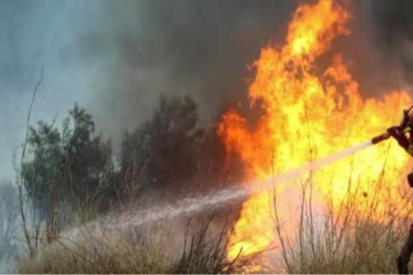 Συναγερμός στη Σκιάθο: Φωτιά ξέσπασε σε ορεινή περιοχή!