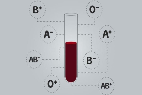 Να γιατί έχουμε διαφορετικές ομάδες αίματος