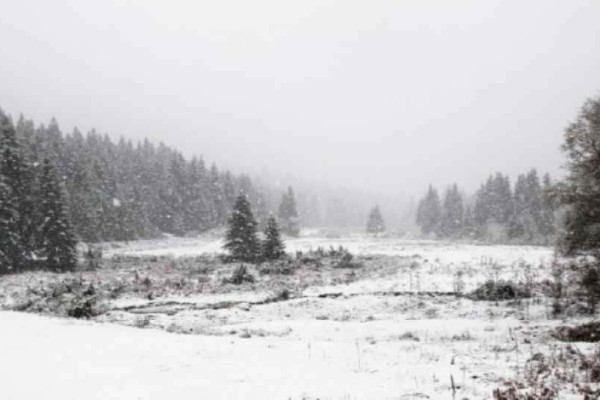 Χιονίζει στα ορεινά των Τρικάλων!