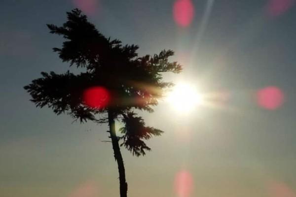 Χειμώνας τέλος: Τι καιρό θα κάνει το τριήμερο της 25ης Μαρτίου;
