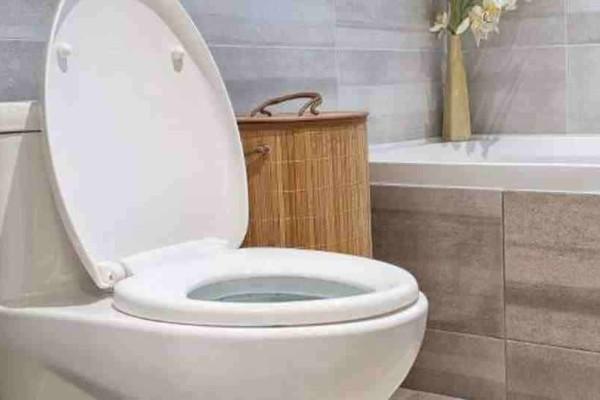 Γιατί πρέπει να έχουμε τη λεκάνη της τουαλέτας πάντα κλειστή; (video)