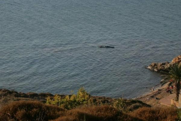 Σοκ στη Χίο: Εντοπίστηκε πτώμα σε παραλία του νησιού!