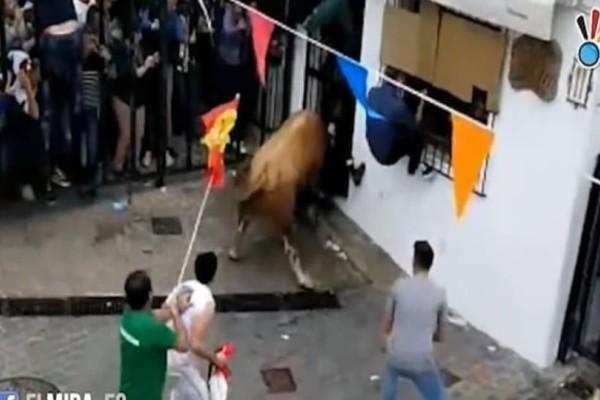 Σοκ στην Ισπανία: Άντρας σκοτώθηκε από χτυπήματα ταύρου σε φεστιβάλ! (Video)