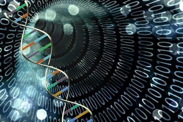 Απίστευτο! Γονιδίωμα έμβιου οργανισμού δημιούργησε υπολογιστής!