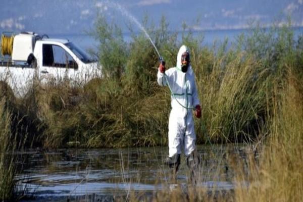 Αττική: Ξεκίνησε ο ψεκασμός για τα κουνούπια!