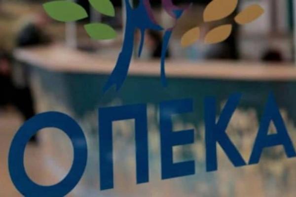 ΟΠΕΚΑ: Από σήμερα οι αιτήσεις για τα προγράμματα Αγροτικής Εστίας...