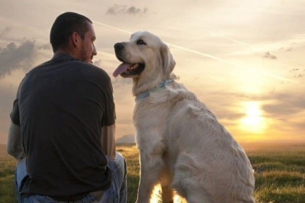 Έρευνα: Και όμως οι άνδρες με μούσι έχουν περισσότερα μικρόβια από τους σκύλους!