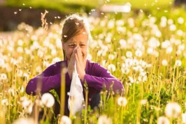 Πως να μειώσετε και να καταπολεμήσετε τις αλλεργίες του καλοκαιριού!