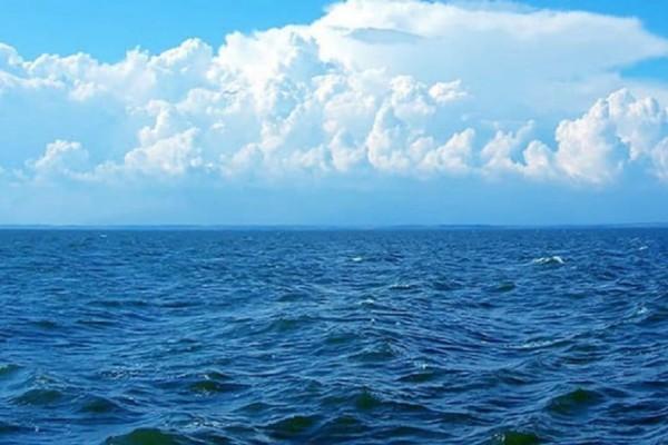 Μετά από αυτό δεν θα ξαναμπείτε ποτέ στην θάλασσα...