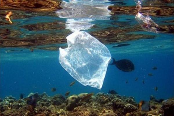 Έτσι θα καταλάβετε αν η θάλασσα που κάνετε μπάνιο είναι μολυσμένη...
